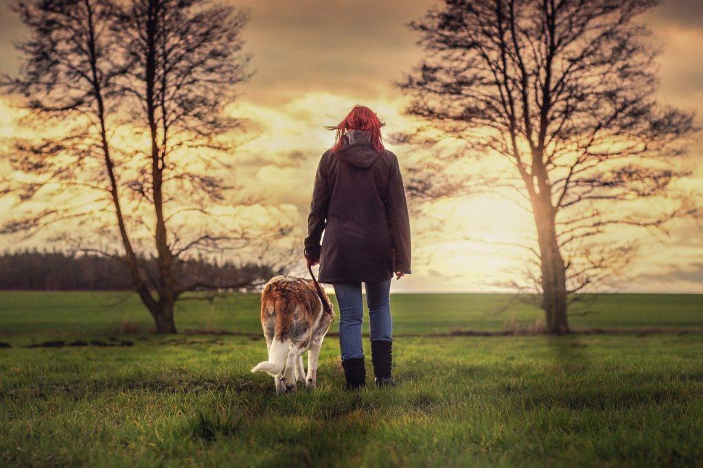 landscape, human, dog