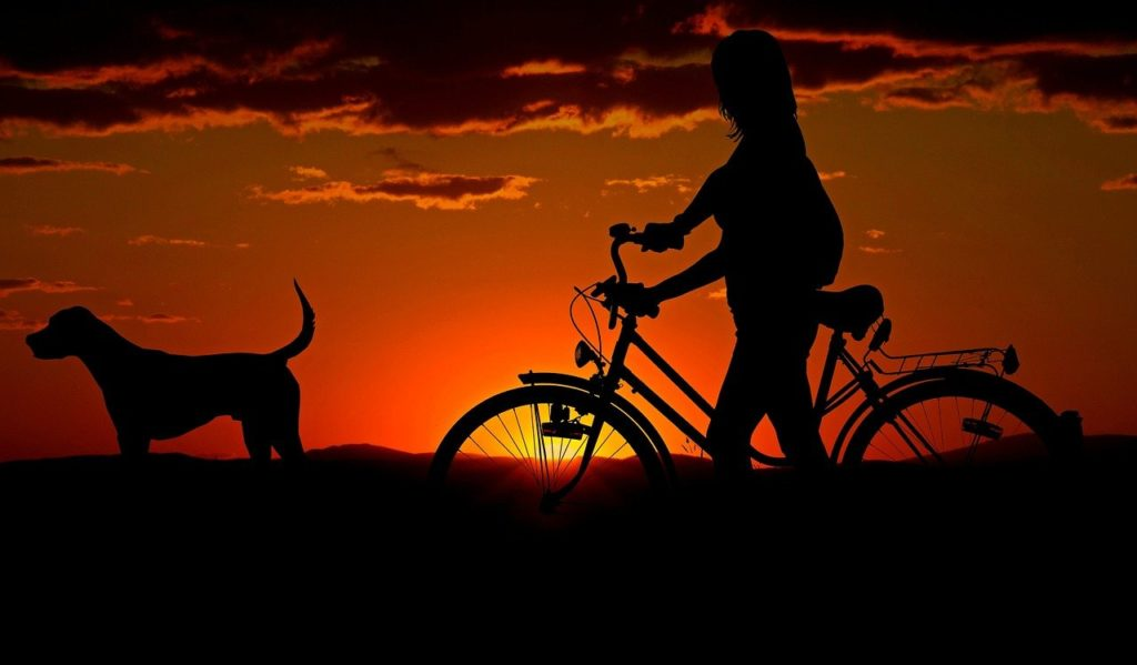 woman, bike, sunset